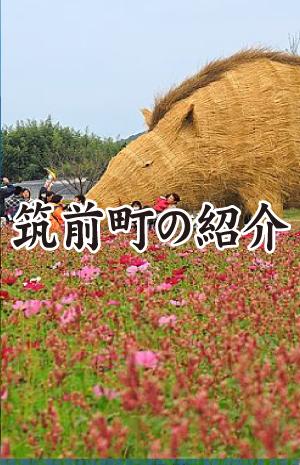 chikuzenmatisyoukai_sample